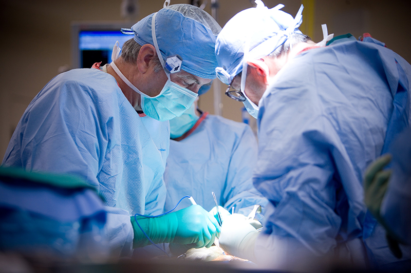 Cardiac Surgeons at Work